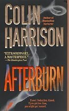 Afterburn by Colin Harrison 2001