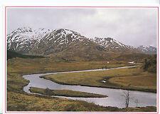 Scotland Postcard - Deep in The Heart of Glen Affric   DD708