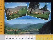 38857] ALESSANDRIA - SALUTI DA CANTALUPO LIGURE - VEDUTE _