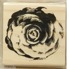 """Open Rose Stamp 3"""" NEW Wood Mount country Cabbage Full Blown Bloom Flower Floral"""
