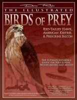 Illustrated Birds of Prey : Red-tailed Hawk, American Kestrel & Peregrine Fal...