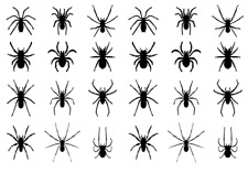 24 x Spiders Halloween Edible Cupcake Toppers Wafer Paper Fairy Cake Topper