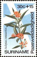 SURINAME -1974- Easter Charities Flower - BLOOD FLOWER - MNH Semi-Postal-#B207