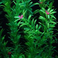 Plastic Green Plant Aquarium Fish Tank Underwater Grass 15-50cm Aquatic Weed
