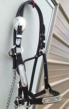 Dark oil leather yearling/cob Western show halter & lead w/berry edged silver
