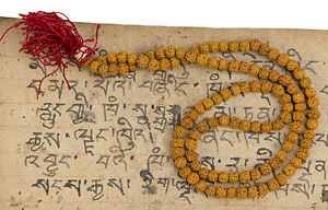 Collana Mala Tibetano Rosario Shiva Semi Rudraksh Rudraksha Ø4 / 5mm Nepal 7367