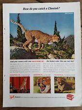 1964 ansco camera film how do you catch a cheetah ad