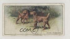 1925 Player's Dogs Tobacco Irish Terrier #44 1u6