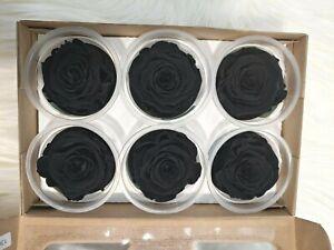 Preserved Roses - Eternity Rose - Valentine's day - Black - 6 Pack