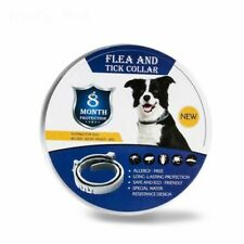 Flea and Tick Collar for Dogs With Adjustable Waterproof 8 Month Protection 62cm