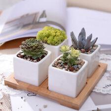 Mikrogarten Hochzeit Mini Blumentöpfe quadratische Pflanzen Vase Töpfe kleineHEN