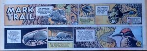 Mark Trail by Ed Dodd & Tom Hill - lot of 8 color Sunday comic pages from 1979