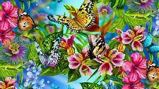 Modern Art HD prints oil painting on canvas Butterfly chameleon 24x16