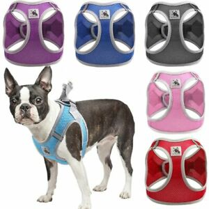 Breathable Mesh Small Pet Dog Harness Adjustable Reflective Vest Harness Outdoor