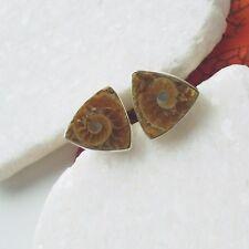 Ammonit Fossil braun beige eckig Design Ohrstecker Ohrringe 925 Sterling Silber
