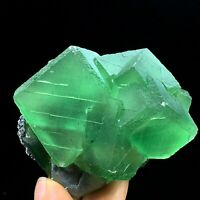 269.5g Natural Beautiful Translucent Green Cube Fluorite  Mineral Specimen/China