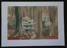 Marthe VAN DERYKEN (1892-1981) Forêt paysage Waldlandschaft Forest landscape