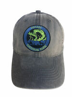 Denali National Park Adjustable Curved Bill Strap Back Dad Hat Baseball Cap