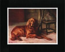 IRISH SETTER WAITING BY GUN GREAT VINTAGE STYLE DOG PRINT READY MATTED