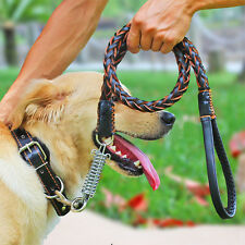 Pet Dog Leather Collar Leash in 1 Braided Walking Chain Rope Spring Medium Dogs