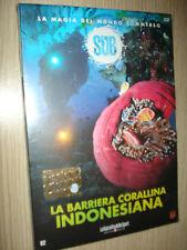 DVD N°2 SUB LA MAGIA DEL MONDO SOMMERSO LA BARRIERA CORALLINA INDONESIANA