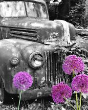 Purple Gray Wall Art Photo Print Vintage Truck Flowers Home Decor Bedroom Bath