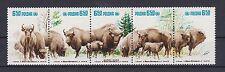 Polen 1981 postfrisch MiNr. 2764-2768