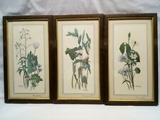 LOT OF 3 - RAY HARM #SIGNED#  PRINT PLATE I & II & III 1964 VINTAGE FRAMED