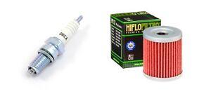 Oil Filter NGK Spark Plug Tune Up Kit For Suzuki Quadrunner 250 300 LT300E LT250