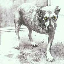 Alice In Chains CD COLUMBIA
