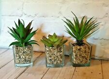 3 Succulent Simple Artificial Themed Glass Potted Plants Flowers Garden Home