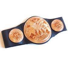 Deluxe WWE Wrestling TAG TEAM CHAMPIONS Roleplay Belt costume accessory