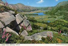 postcard Ireland  Ladies view Killarney unposted  hinde