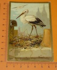 CHROMO BON-POINT IMAGE ECOLE Gaufré 1890-1910 ANIMAUX CIGOGNE