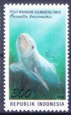 Mahakam Dolphins, Critically Endangered, Marine Life, Indonesia 1996 MNH - B39