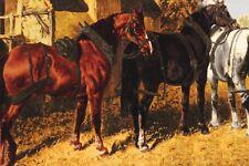 täbrizi très bien cheval motif IMAGE PERSAN TAPIS tapis d'Orient 0,41 x 0,72