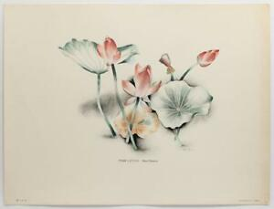 Great Depression Artist ALICE DINNEEN Pink Lotus VINTAGE 1947 Lithograph #543