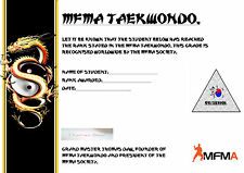 MFMA TAEKWONDO DVD COURSE: BEGINNER TO 1ST DAN.RARE.