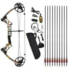 19-70lbs Compound Bow kit & 12pcs Fiberglass Arrows Hunting Target Practice RH