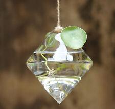 Diamond Shape Hanging Glass Flower Planter Vase Terrarium Container Decor US
