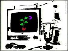 MARIO STRACK - Grow & Eat  extended Videographie Druck Grafik signiert Stilleben