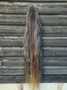 Horse Hair On The Hide