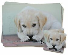 Yellow Lab Pup 'Yours Forever' Twin 2x Placemats+2x Coasters Set in G, AD-LP1yPC