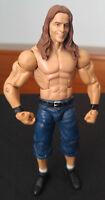 WWE Bret Hart Elite Figure Summerslam 2010 Toys R Us Exclusive Mattel