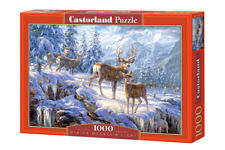 Puzzle Winter Mountain Light, 1000 Teile