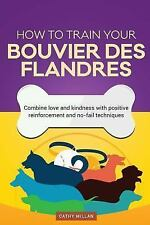 How to Train Your Bouvier des Flandres (Dog Training Collection) : Combine.
