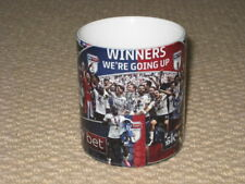 Fulham Championship Play-off Winners Celebrate MUG