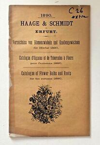 Catalogue D'Ognons Et De Tubercules Ecrans Fleurs De Haage & Schmidt 1890