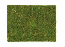 moosplatte 40x30cm Décorations pour maison et jardin