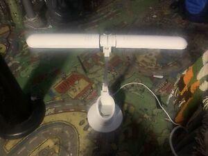 Strange Desk Lamp